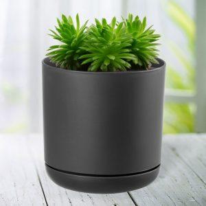 pots self watering
